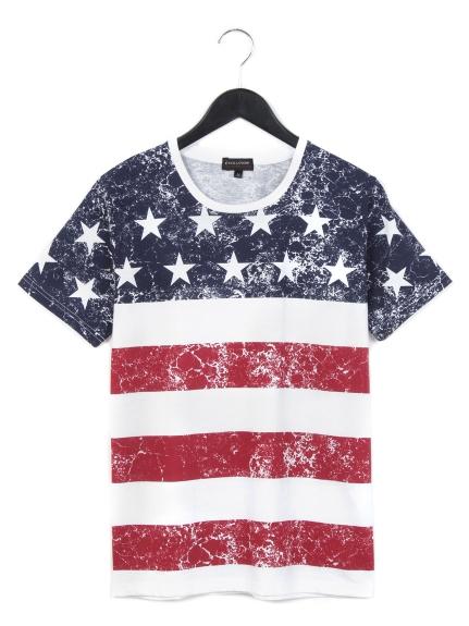 EVOLUTION (エボリューション) パネル星条旗プリントTシャツ レッド