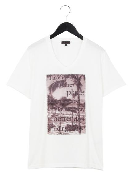 EVOLUTION (エボリューション) 3DプリントVネックTシャツ オフ2