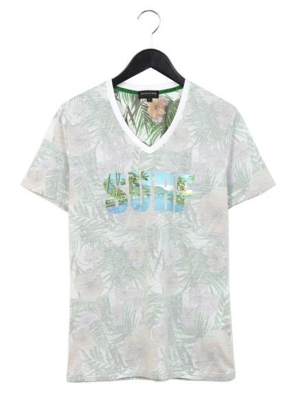 EVOLUTION (エボリューション) 胸ロゴプリントVネックTシャツ グリーン
