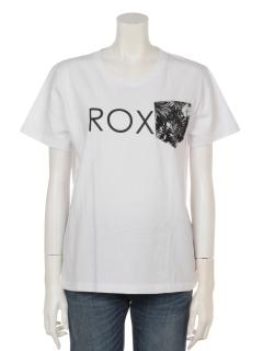 ROXYPKTTROXY