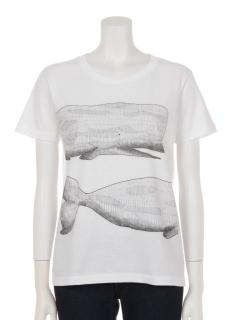 クジラプリントTシャツ