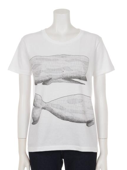 THREE LAMPS WEAR (スリーランプスウェア) クジラプリントTシャツ ホワイト