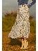 ◆ミックススフラワープリントスカート