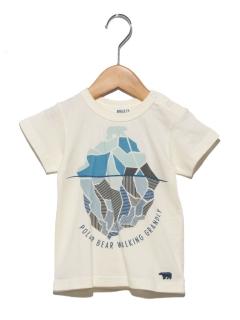 アイスバーグTシャツ