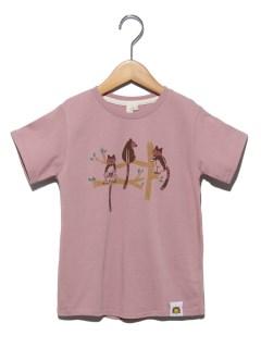 [ズーラシアコラボ]セスジキノボリカンガルーTシャツ