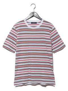 マルチボーダーTシャツ S/S